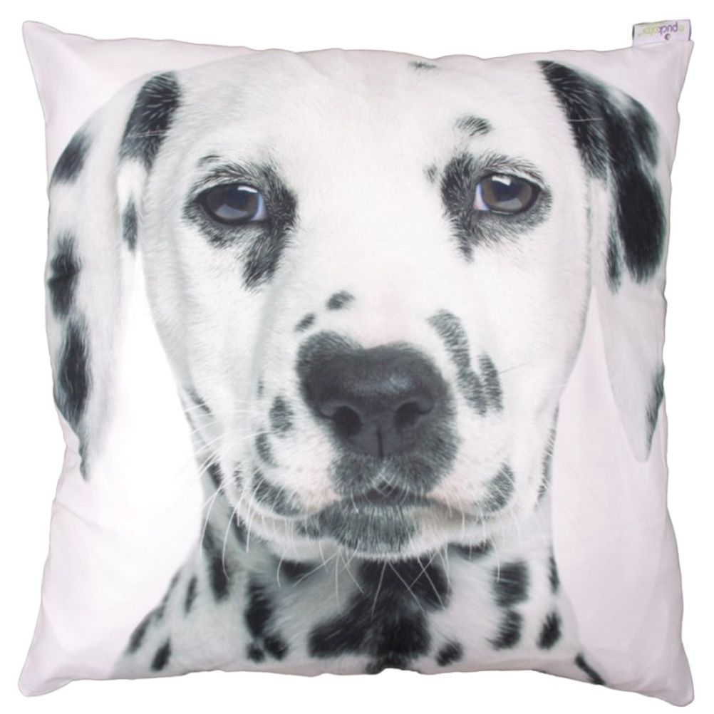 grand coussin chien. Black Bedroom Furniture Sets. Home Design Ideas
