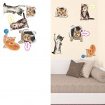 Stickers Muraux Chatons